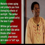Melanin and how it Determines Your Race 1
